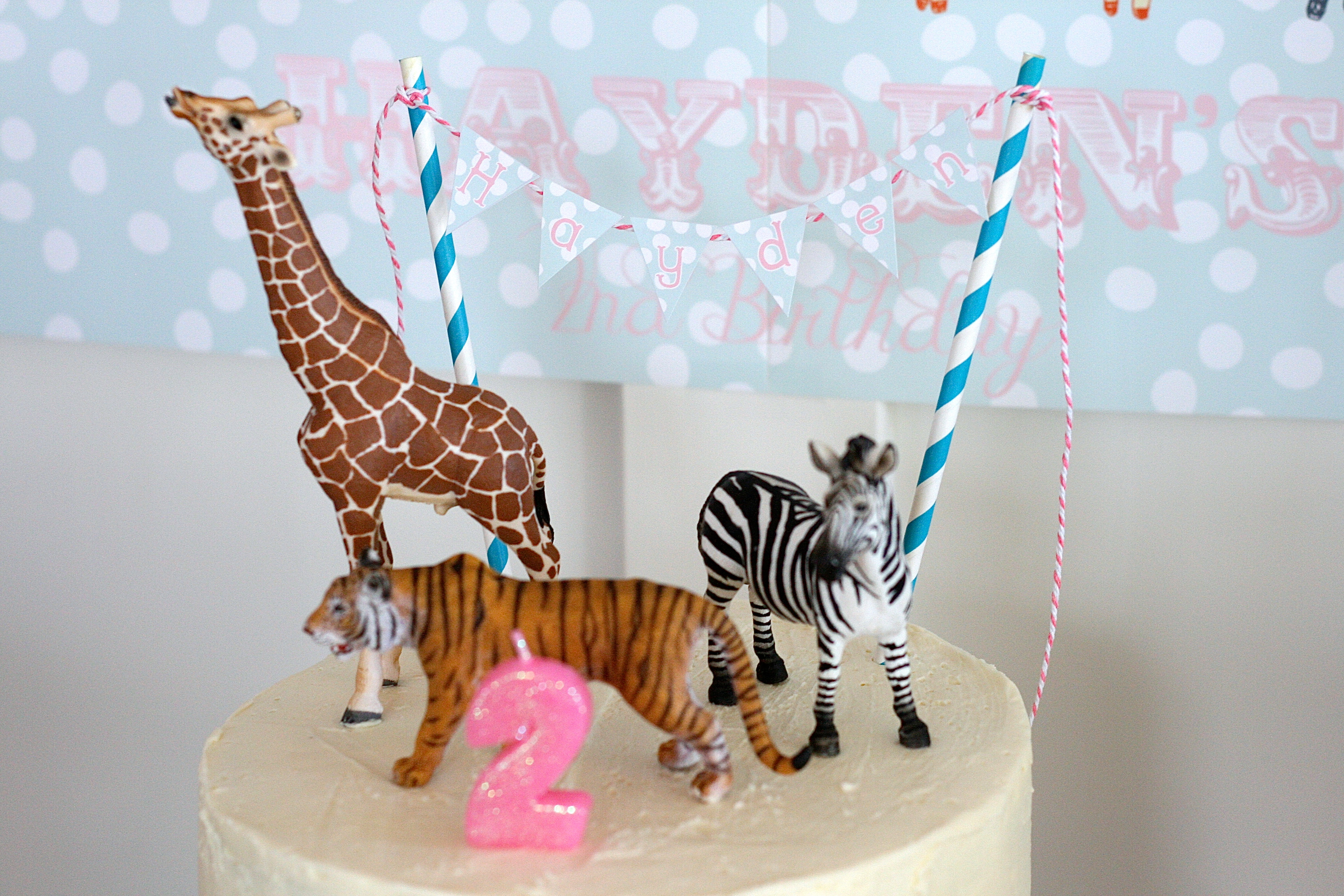 Outstanding Two At The Zoo 2Nd Birthday Party Smash Cake Funny Birthday Cards Online Amentibdeldamsfinfo