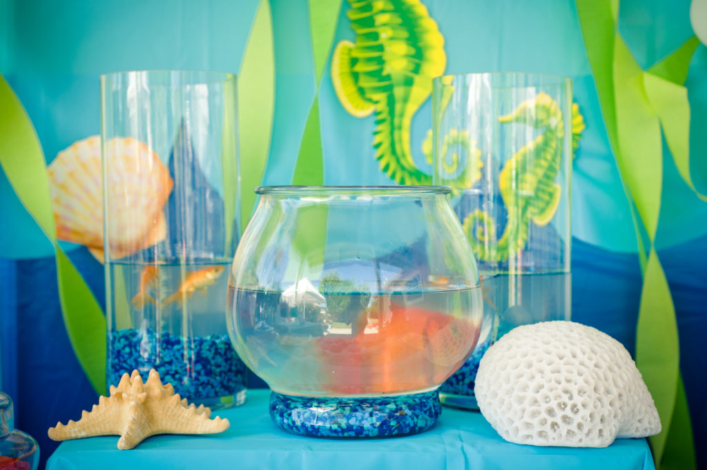 Marigold Mom | Under the Sea Water Party , Summer Party, Goldfish, Decor, Aquarium