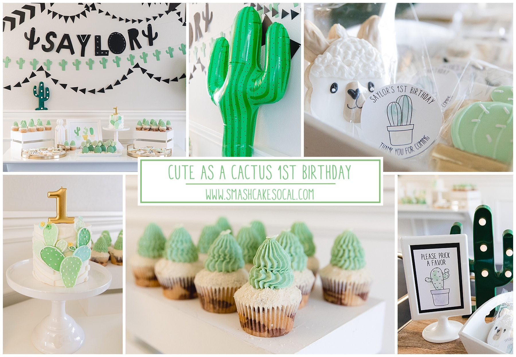 Cute Little Cactus 1st Birthday Party Smash Cake